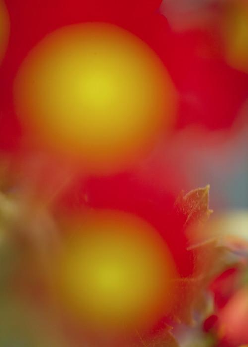 Farbname Farbcode by Paul Rousteau - © Garagisme